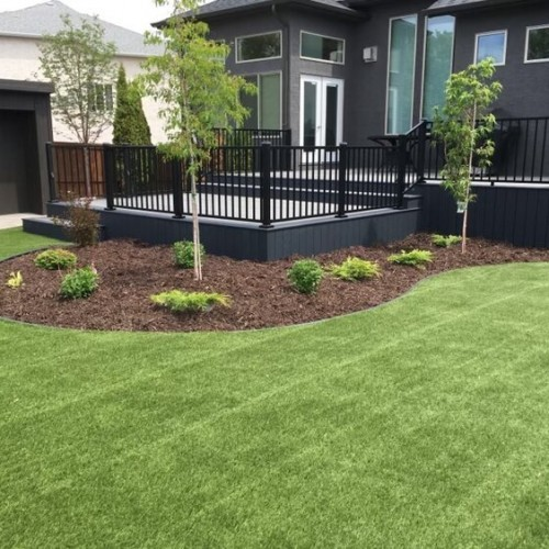 How Do I Create A Healthy Lawn Throughout The Year?
